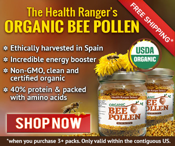 04-25-17-04-22-30_HR+Bee+Pollen+300x250